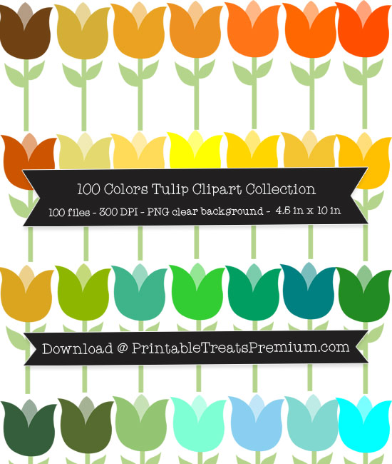 100 Colors Tulip Clipart Collection