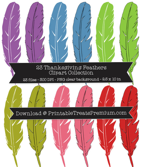 Thanksgiving Feathers Clipart Collection