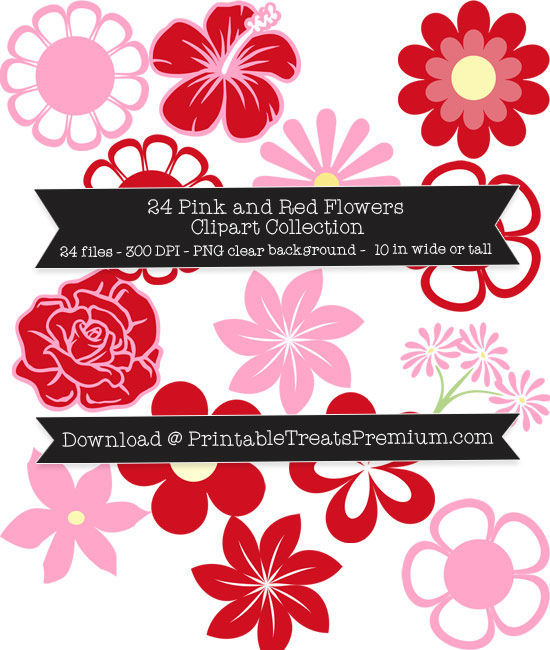 24 Pink and Red Flowers Clipart Collection