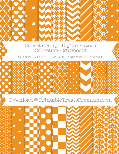26 Carrot Orange Digital Papers Collection