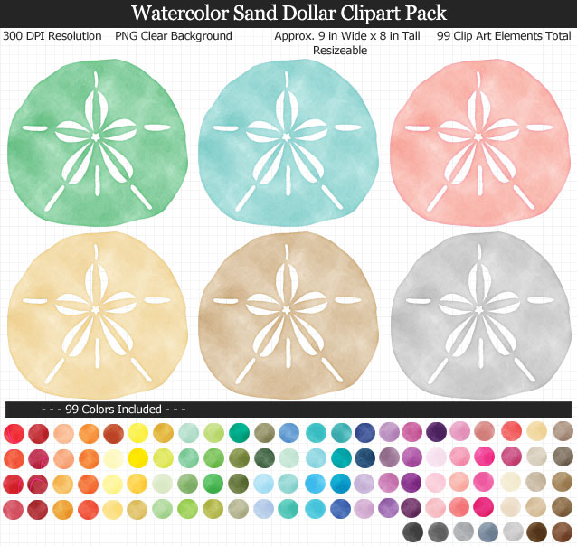 Love this cute set of watercolor sand dollar clipart - Beach Under the Sea clear background - 99 colors